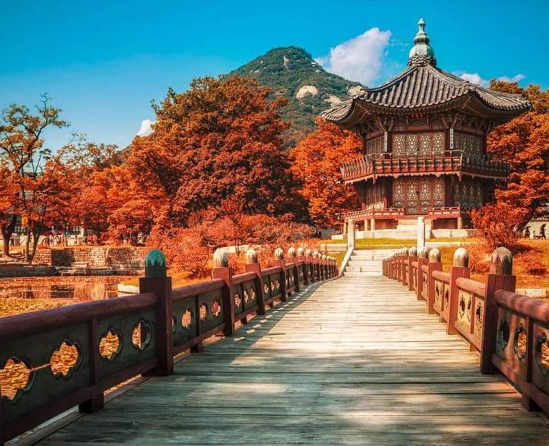 Thoải mái ở Hàn Quốc với máy dịch tiếng Hàn